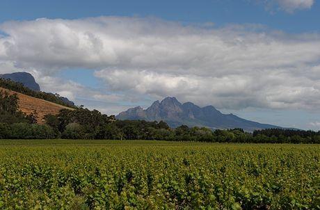 Weinbaugebiet Franshoek