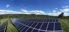 Singita und Tesla fördern den Ausbau erneuerbarer Energien im Krüger Nationalpark